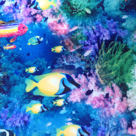 Vibrant Underwater Print | Deep Sea Diving