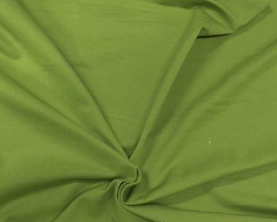 Lightweight Palm Spandex, green spandex, green fabric