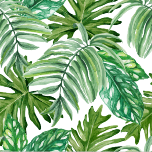 Palm Paradise Paper, discount fabric